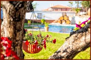 Jardines y piscina de La Finca de las Cuevas del Principe en Navalcarnero